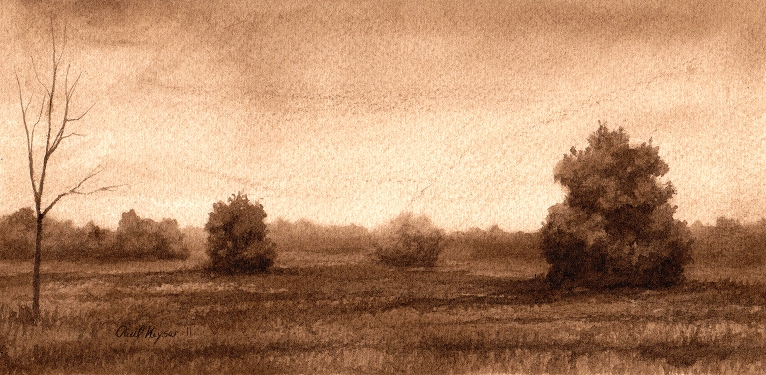 Mist - Walnut Ink Drawing by Paul Keysar