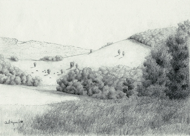 Sketch for Black Angus Grazing - Graphite Drawing by Paul Keysar